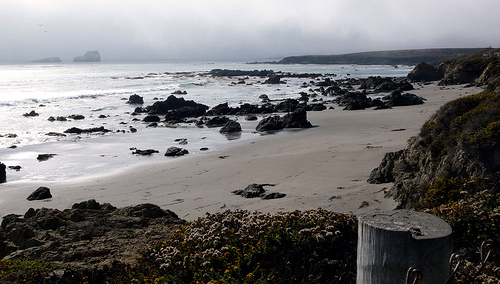 Road Trip: San Simeon, California