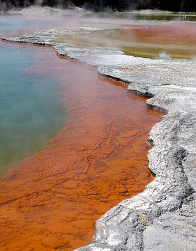 Photo Saturday: Geothermal Colors of Wai-O-Tapu