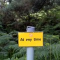 at-any-time