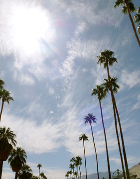 Photo Saturday: Palm Springs, Here I Come!