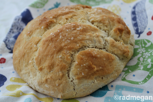 No-Knead Rosemary Bread (or, Focaccia depending on how distracted you are)