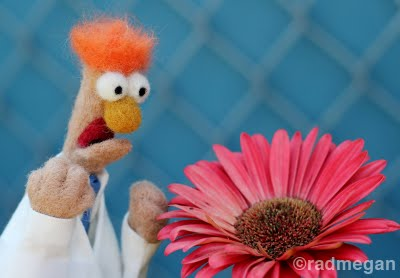 Beaker: The Most Easily-Frightened (Needle-Felted) Muppet Ever.