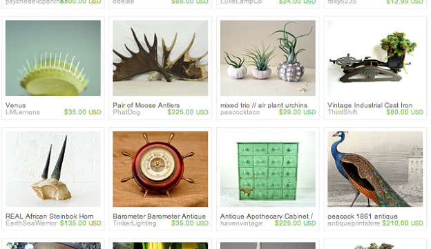 Natural History: An Etsy Treasury