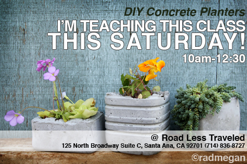 Concrete Planter Workshop THIS WEEKEND in Santa Ana, CA