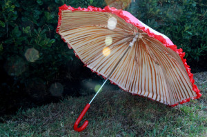 MushroomBrellas-UmbrellawithGills-eHow
