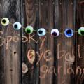 eyeballpompom-header-ehow