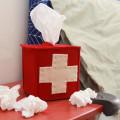 tissueboxcover-radmegan-donebybed-ehow