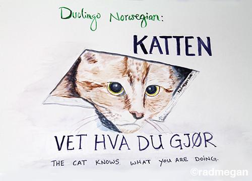 Duolingo (and Meme) Inspired Painting: Katten Vet Hva Du Gjør
