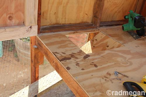 Constructing A Chicken Coop Part 2 Radmegan
